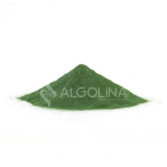 "Algolina Spirulina Powder Doypack 5 KG - ""Turkey's First 100% Domestic Production"""